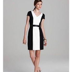 Cynthia Steffens color block dress